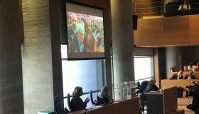 Μπουτάρης για την επίθεση: «Ήταν οργανωμένοι φασίστες» (video)